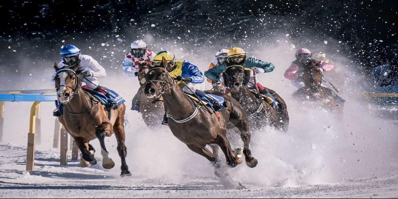 Game đua ngựa ăn xu là gì?