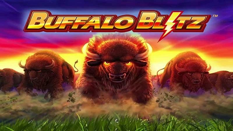 Buffalo Blitz là game gì?