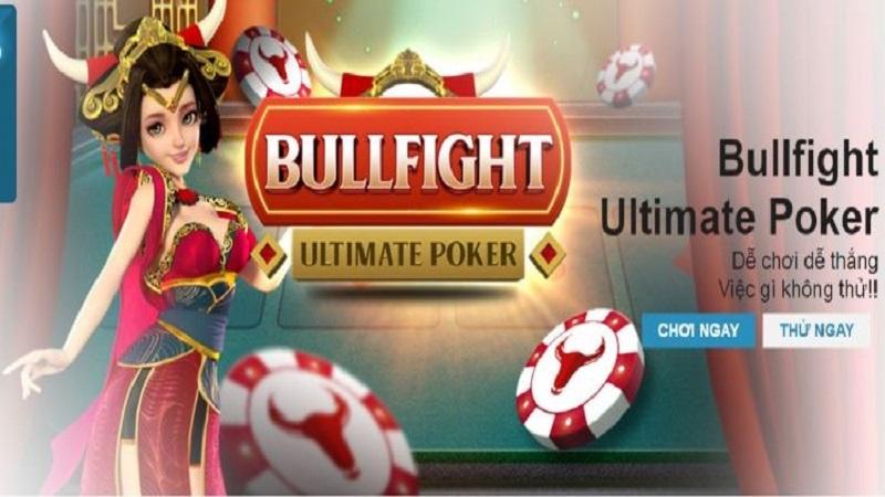 Bull Fight là bài gì?
