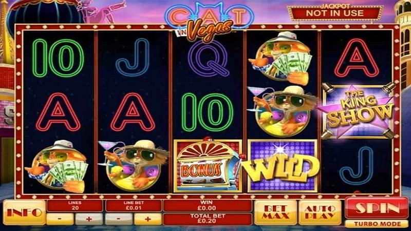 Đặc điểm game Cat In Vegas
