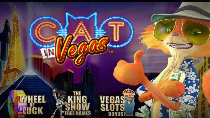 Game Cat In Vegas trên 12BET chơi như thế nào dễ ăn?